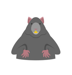 Rat isolated big mouse rodent vector