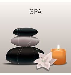 spa with flower candle and stones vector image