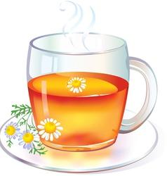 Tea with Chamomile vector