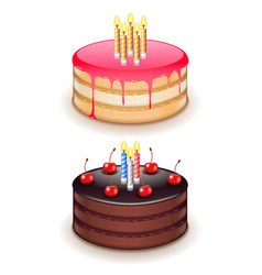 birthday cake with candles isolated on white vector image vector image