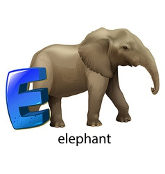 A letter E for elephant vector