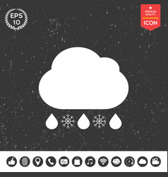 cloud rain snow icon vector image
