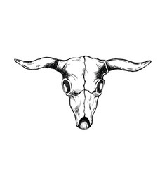 Head bull skull for wild west icon sketch hand vector