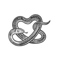 Snake in form heart sketch vector