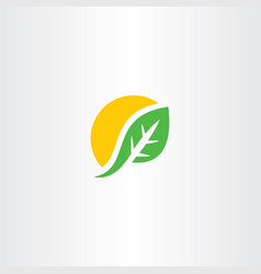 sun and leaf element symbol sign icon vector image