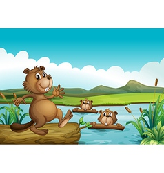 Beavers playing in the river with woods vector image