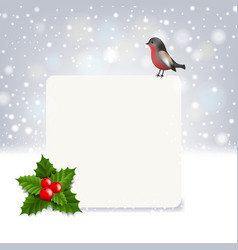 christmas banner with holly berry and bullfinch vector image