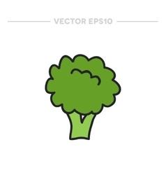 doodle broccoli vector image