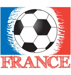 Football championship in france vector
