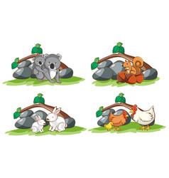 four types animals in garden vector image