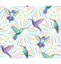 hummingbirds pattern vector image