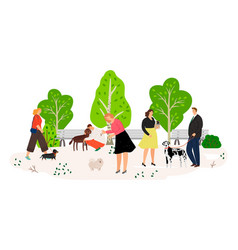 people with dogs in park flat vector image
