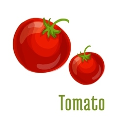 Tomato vegetable icon vector image