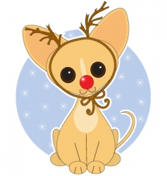 chihuahua rudolf vector image vector image