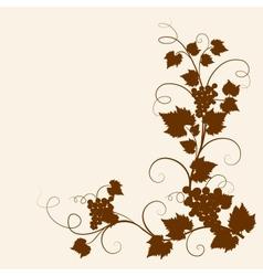 Grape vine vector image vector image
