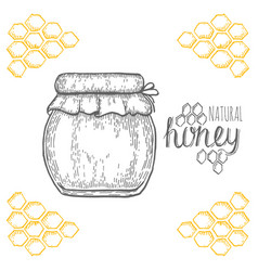 hand drawn jar of honey over white background vector image vector image
