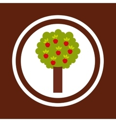 apple tree nature icon vector image