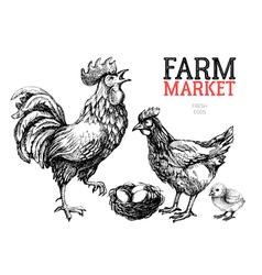 Farm market poster design template Chicken rooster vector