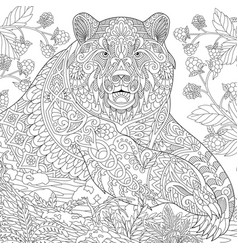 Grizzly bear adult coloring page vector