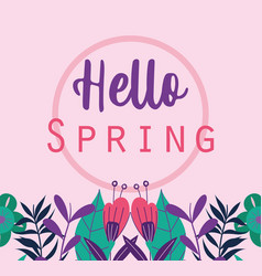 hello spring phrase flowers leaves plants vector image