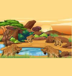 Scene with hyena in savana field vector