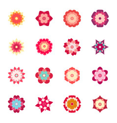 set colorful flowers vector image