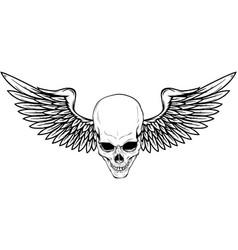Skull with bird wings vector