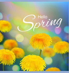 stock hello hi spring vector image