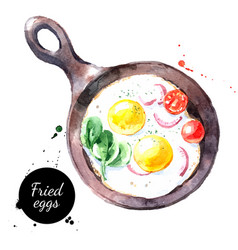 watercolor hand drawn breakfast fried eggs vector image