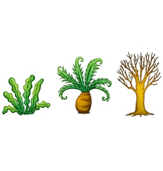 A plant and tree vector