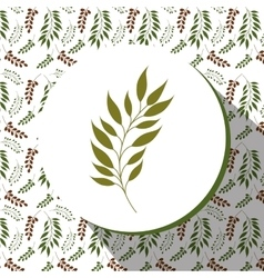 Floral and flowers decorative design vector image vector image