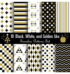 Golden black and white geometrical pattern set vector