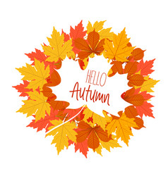 Hello autumn the decor of the autumn leaves white vector