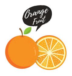 Orange whole and slice oranges vector