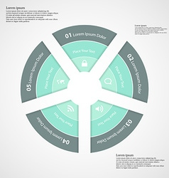 Round infographic consists of five parts vector