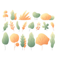 simple colorful autumn leaves autumnal trees vector image