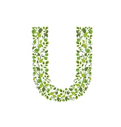 Spring green leaves eco letter U vector image