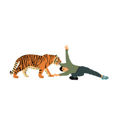 Tiger attacks man isolated vector
