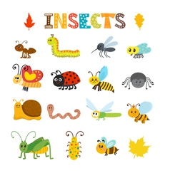 set of cartoon insects Colorful bugs collection vector image