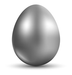silver egg isolated on white background for vector image vector image