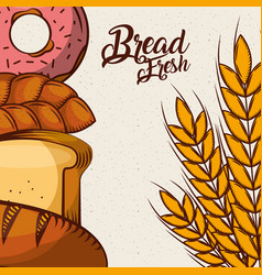Bread fresh donut croissant wheat assortment bake vector