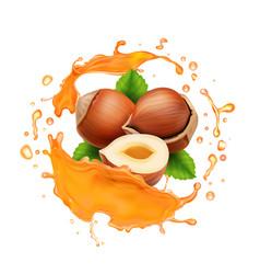 Caramel or honey splash and hazelnut realistic vector