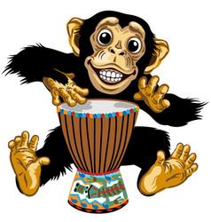 Cartoon chimp native african drummer vector