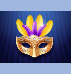 colorful feather masquerade carnivalfestive mask vector image