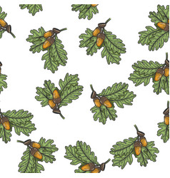 oak branch seamless pattern sketch vector image