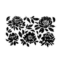 Roses peonies chrysanthemums set vector