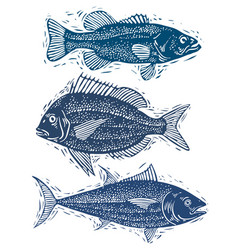 Set of fishes different underwater species vector