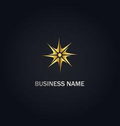 Star shine gold logo vector