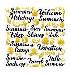 summer handwritten lettering vector image
