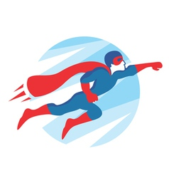 Superhero Icon vector image